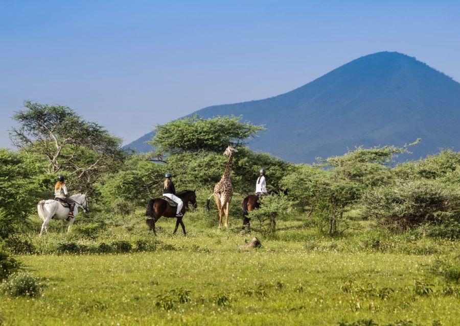 Horseback riders exploring Africa with a giraffe among them.