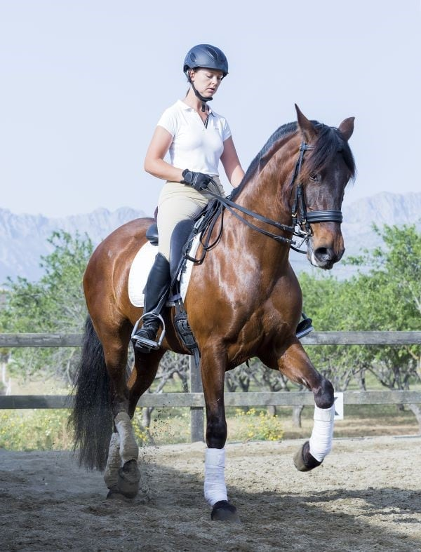 A woman riding a dressage performance horse in training.